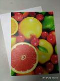 Рекламирующ лист доски штейновый/штейновый ВАЛЬМ для печатание от Suzhou Китая