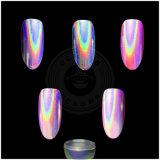 Het suikergoed kleurt de Holografische Spijker van de Regenboog van de Suiker schittert Poeder