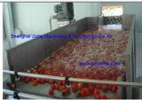 Goma de tomate orgánica Brix 28-38% en el tambor aséptico 220L