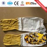 Guanti dell'ape di buona qualità sulla vendita