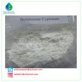 Polvere androgena anabolica pura Boldenone Cypionate/CYP stampata in neretto (106505-90-2) steroide dell'ormone