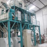 50 Tpd planta de beneficiamento de farinha de milho compacto, fábrica de moagem de milho