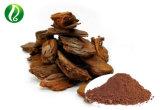 GMP 공장 공급 소나무 수피 추출 Proanthocyanidins 50%-95% 의 Polyphenols 30%-95%