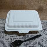 No rectángulo de almuerzo disponible no tóxico de la maicena del olor biodegradable