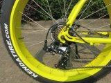 26 낮은 단계 뚱뚱한 타이어는 모터 Sr 시트 전기 자전거 자전거 Ebike를 중앙 몬다