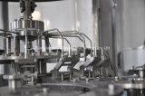 가득 차있는 자동적인 주스 음료 충전물 기계
