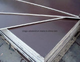 18mm Brown and Black Poplar Core Film Faced Plywood