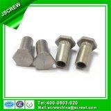 Kundenspezifische verschiedene Typen Hex Kopf-Gewinde-Einlage-Stahlniet-Muttern