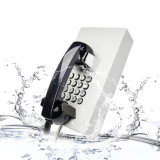 旧式な電話コードレスPAXシステム会議の電話Knzd-12