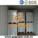 La pente D.C.A. 230GSM jaillissent papier cartonné duplex enduit en feuille