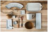 Insieme di ceramica caldo del piatto di pranzo di buona qualità del commestibile di vendita