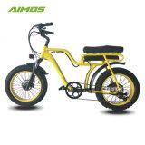 L'étape par le biais de matières grasses de montagne de pneus vélo électrique 250W