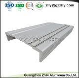 China anodiseerde het Profiel van het Aluminium voor de Versterker Heatsink van de Auto