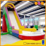 Haut de l'eau gonflable ovale diapositive pour Kid (aq1065)