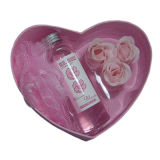 Установленный подарок дня Valentine (Kin-9304)