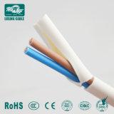 2,5 mm2 Twin et câble de masse pour fiches femelles/2coeurs câbles plats