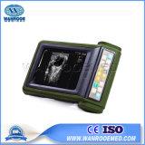 Usrku10 больницы животных с помощью ветеринарного ультразвукового сканера .