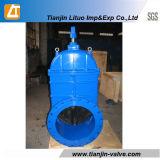 DIN3352 F4 게이트 밸브 또는 Duvtile 철 탄력있는 게이트 밸브