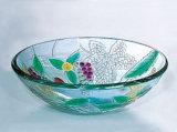 De Gootstenen van de Kom van het glas, het Bassin van de Was van het Glas (A096)