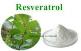 Гигантская выдержка 98% Resveratrol Knotweed