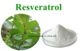 Естественный гигантский порошок Resveratrol 10%~98% выдержки Knotweed