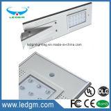 6W 12W 18W 20W 60W 80W 100W 120W 12V LEDの太陽街灯