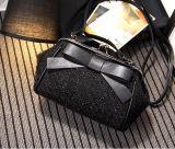 2017新しい絹のBownotのハンド・バッグクリップ特別なCrossbody袋Hcy-5037