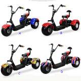 Triciclo eléctrico de Harley Citycoco con el motor del eje 1000W