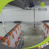 돼지 시간 절약하 사슬 자동 공급 시스템 빨리 납품 및