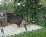 Загородка звена цепи сетки зверинца высокого качества/PVC Coated