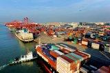 Maerskのシンセンからのポート・ルイスへの速い海の出荷