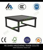 Hzct022エステルのコーヒーテーブルは家具に金属をかぶせる