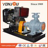 Heißöl-Umwälzpumpe mit Exxd Motor/thermischer Öl-Pumpe