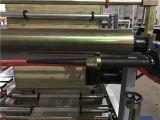 La bolsa de plástico que hace la máquina con el rodillo continuo