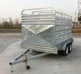المتأخّر مخزون صندوق شحن مع يتاجر تأمين