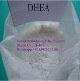 Gros supplément anabolique brûlant de corps d'acétate de déhydroépiandrostérone de la pureté 99% de Steriods