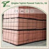 Una vez presionó la madera contrachapada Shuttering hecha frente película de la madera contrachapada para el mercado de los UAE