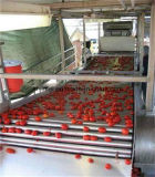 Relleno de la goma de tomate de la máquina del puré del tomate y tomate de la empaquetadora de lacre que lava la salsa de tomate de Machinecommercial que hace la máquina