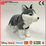 リアルなプラシ天のおもちゃのぬいぐるみの柔らかいおもちゃのオオカミ