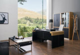 Китайской мебели горячие продажи Босс (V29)