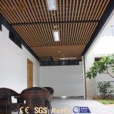 Comitati di soffitto bassi del PVC di prezzi bassi MOQ del fornitore del Guangdong