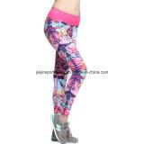 Poliester Sports Polainas atractivas de la aptitud de la gimnasia de las mujeres de secado rápido del entrenamiento