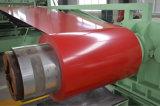 Shandong a enduit la tôle d'une première couche de peinture d'acier galvanisée dans la bobine