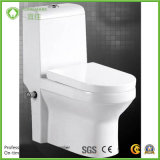Der Irak-und MITTLERER Ostmarkt-moslemische gesundheitliche Arbeitskarte-Toilette mit Bidet-Funktion