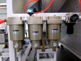 Optische und automatische Plastikfarben-Sorter-Maschine in Hefei