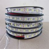 중국 공급자 신제품 5050 SMD LED Bande
