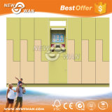Intelligent Parche Delivery Locker / Laundry Locker / Smart Locker Provider