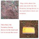 Dispositif pliable en plastique de cadre de station d'amorce de termite d'Ilot 110013A