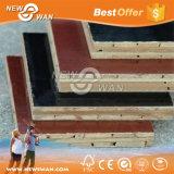 Contrachapado de encofrado de bambú para el uso de la construcción