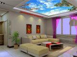변하기 쉬워 가정 훈장 색깔을%s 풍광 LED 위원회